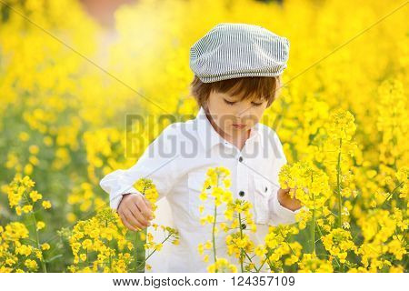 Cute Adorable Child, Boy, In An Oilseed Rape Field