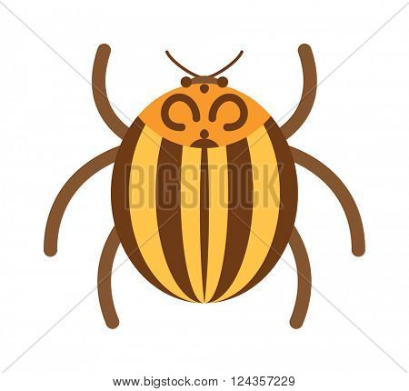 Beetle flat insect bug in cartoon style vector illustration