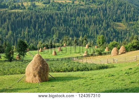 rural landscape with haystacks in Apuseni Mountains, Romania