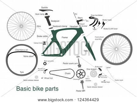 infographic of the main bike parts with the names