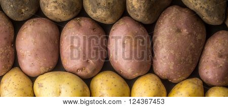 Raw potatoes mix background wide screen letterbox format