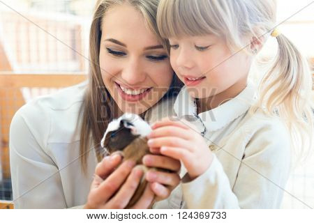 Family with cavy in zoo