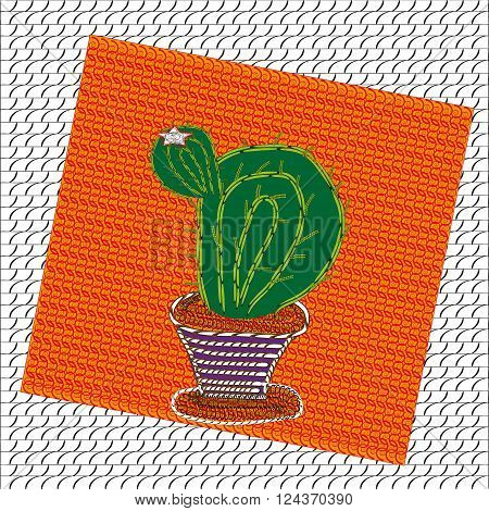 Image of blooming cactus