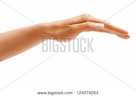 Woman's hand sign isolated on white background. Inverted open palm close up.