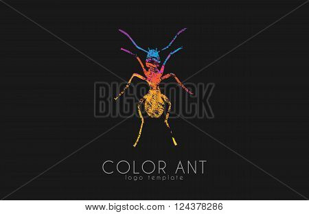 Ant logo. Color ant symbol. Creative ant