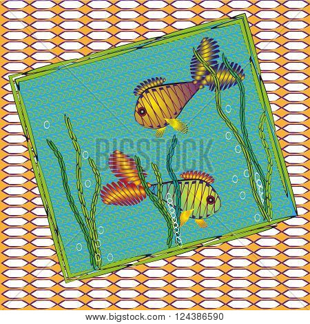 Picture of two colored fish