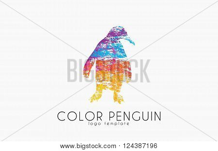 Penguin logo. Color penguin design. Creative logo