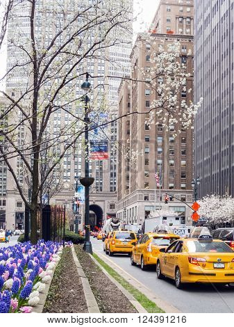 NEW YORK-MARCH 31-A Spring view along Park Avenue with a line of taxi cabs on March 31 2016 in New York City.