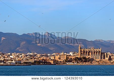 Palma de Mallorca skyline with Serra de Tramuntana mountains and Puig Major peak in background, view from the sea of a part of the city buildings and cathedral landmark