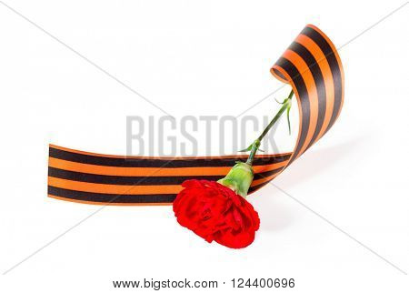 Red Carnation with ribbon St. George. isolated on white background