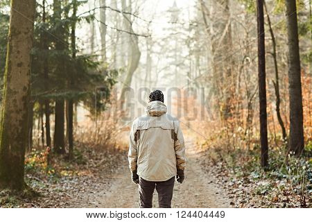 Rearview of a man in warm clothing standing in a forest, on a winter day looking at a path with gentle sunlight shining on the road