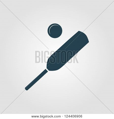 Icon Cricket Ball On Radial Grey Background