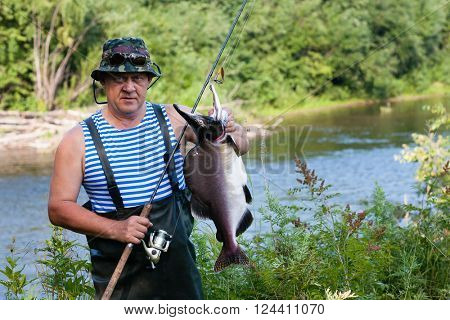 Fisherman keeps caught salmon (male pink salmon) was caught in the river. Far East Russia.