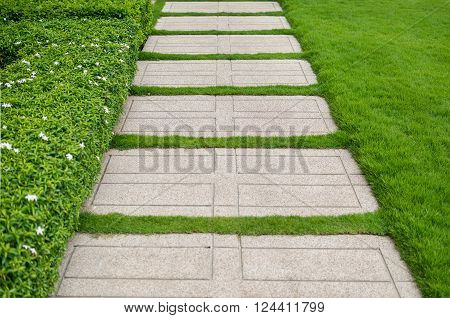 Gravel texture and strip grass as background