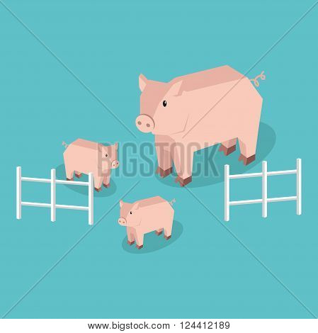 Isometric pig with piglets isolated. Pig family animal farm with litttle piglet, funny drawing livestock farm boar or big swine, funny cute pig with pigling stand near fence. Vector illustration
