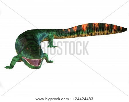 Eogyrinus Tetrapod Body 3D illustration - Eogyrinus was an aquatic predatory tetrapod that lived in the Carboniferous Period of England.