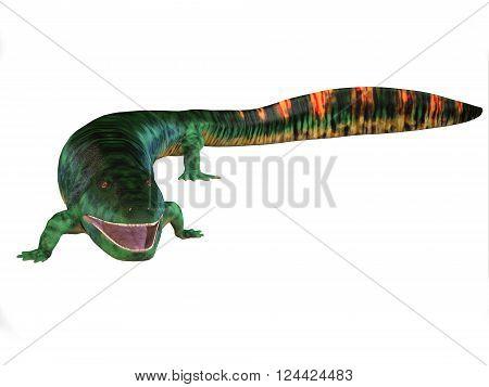 Eogyrinus Tetrapod Body 3D illustration - Eogyrinus was an aquatic predatory tetrapod that lived in the Carboniferous Period of England.
