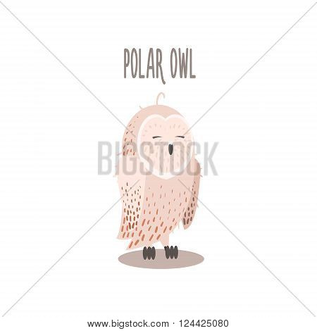 Polar Owl Drawing For Arctic Animals Collection Of Flat Vector Illustration In Creative Style On White Background
