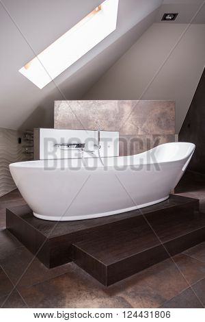 Elegant Freestanding Bath