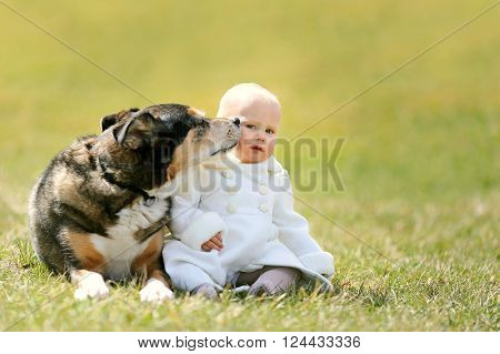 Cute 12 Month Old Baby Girl Sitting Outside With Pet Dog