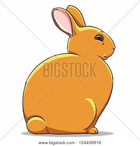 funny cartoon cute cool fat rabbit illustration