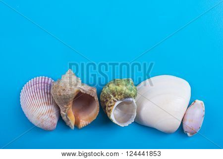 Summer sea vacation background. Notebook blank page with Travel items on blue table. Sea shells, pebbles, top view mockup