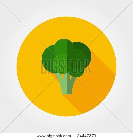 Broccoli. Icon for web and mobile application. Vector illustration on a button with a long shadow. Flat design style.