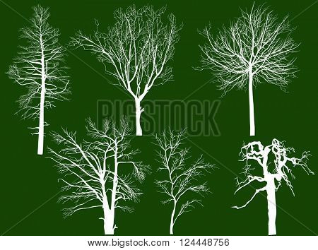 illustration with bare trees isolated on green background