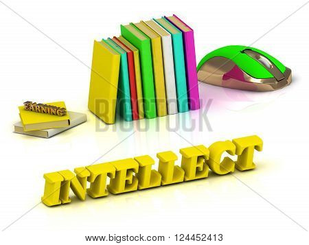 3D illustration INTELLECT bright color yellow volume letter and textbooks and computer mouse on white background