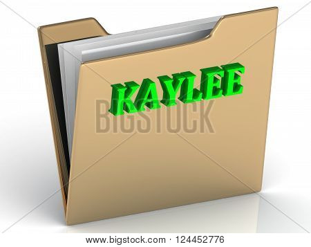 KAYLEE- bright green letters on gold paperwork folder on a white background