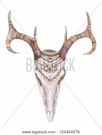 Watercolor skull with flowers arrows and feathers. Boho tribal style bull design. American rustic indians bison head. buffalo illustration