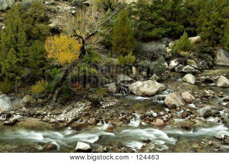 Shell Creek oben