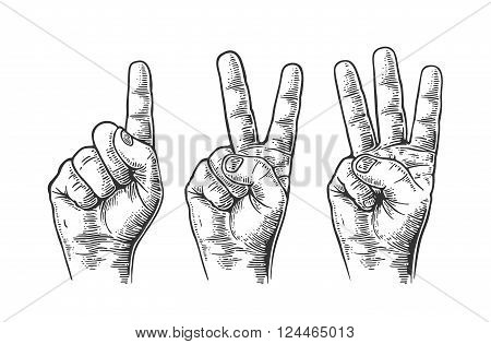 Set of gestures of male hands counting from one to three. Vector vintage engraved illustration isolated on white background.