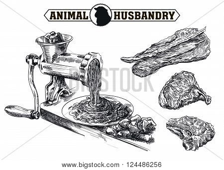 hand drawn sketch outdated grinder in the processing of meat