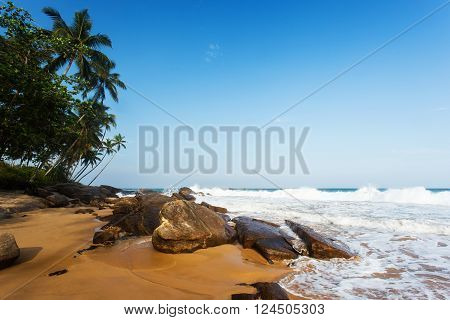 Sunset on sandy beach with palm trees rocks and blue sky. Yellow sand tropical island on vacation.