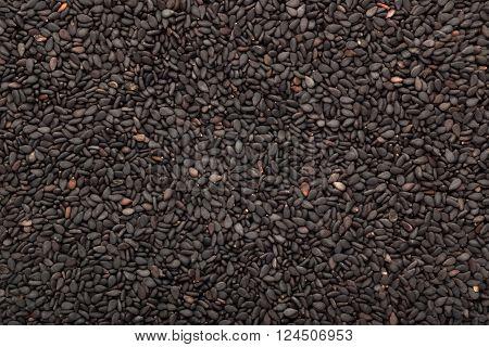 Closeup of lots of black sesame seeds