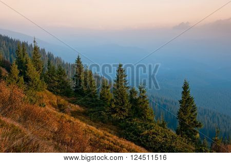 Early misty morning in Carpathian Mountains Ukraine