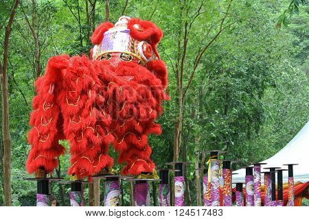 SELANGOR, MALAYSIA -FEBRUARY 18, 2016: The lion dance is a ritual traditions of the Chinese society in Malaysia. The dance is usually played during the Chinese New Year.
