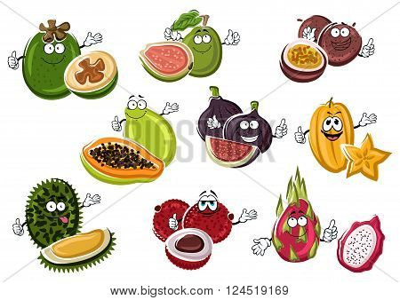 Exotic asian passion fruit and fig, papaya and lychee, starfruit and feijoa, guava, pitaya and durian fruits characters with happy faces. Funny tropical dessert fruits