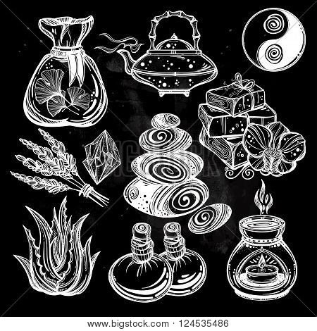 Hand drawn alternative medicine set. Natural solutions for health. Isolated illustration in vector. Organic plants, alternative medicine background. Natural holistic ingredients. Template.