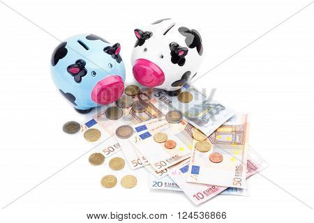 Piggy bank and money isolated on white