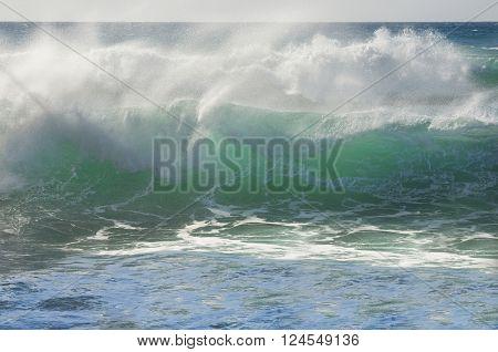 Breaking green wave in the sea side