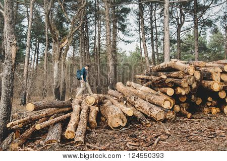 Traveler young man with backpack walking on stack of felled tree trunk in the forest outdoor