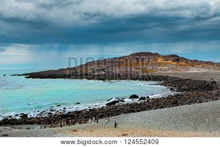 Penguin island in Patagonia changeable south rainy weather Argentina