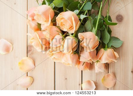 Peach colored roses on rustic wooden background