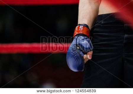 closeup of hand boxer in glove stood in corner of ring