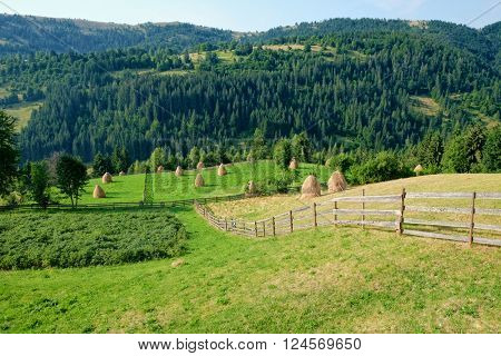 rural landscape with fence in Apuseni Mountains, Romania