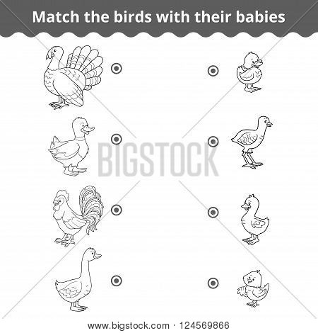 Matching Game For Children, Farm Birds And Babies