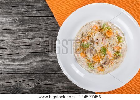 Delicious creamy cheese mushroom soup with spring carrots ground meat and spices decorated with dill in a white wide rim dish on a cutting board on an old rustic table horizontal top view