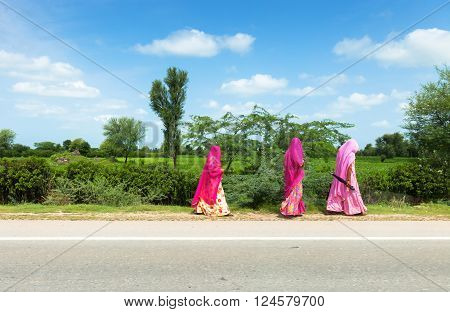 Veiled women under the sun in Rajasthan
